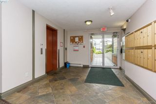 Photo 3: 307 898 Vernon Ave in VICTORIA: SE Swan Lake Condo for sale (Saanich East)  : MLS®# 791894