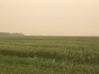 Photo 7: HWY 642 RR 255: Rural Sturgeon County Rural Land/Vacant Lot for sale : MLS®# E4125481