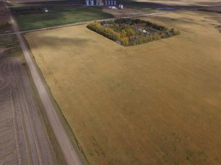 Photo 2: HWY 642 RR 255: Rural Sturgeon County Rural Land/Vacant Lot for sale : MLS®# E4125481