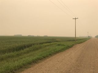Photo 8: HWY 642 RR 255: Rural Sturgeon County Rural Land/Vacant Lot for sale : MLS®# E4125481