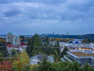 Photo 19: 836 ESQUIMALT Avenue in West Vancouver: Sentinel Hill House for sale : MLS®# R2320954
