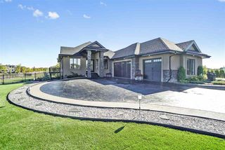 Main Photo: 201 VIA TUSCANO: Rural Sturgeon County House for sale : MLS®# E4138208