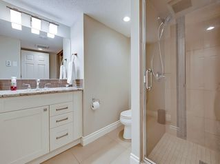 Photo 28: 141 SUNWOOD Place SE in Calgary: Sundance Detached for sale : MLS®# C4221306