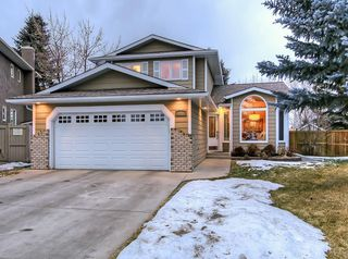 Photo 30: 141 SUNWOOD Place SE in Calgary: Sundance Detached for sale : MLS®# C4221306