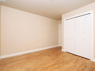 Photo 15: 3590 Shelbourne St in VICTORIA: SE Cedar Hill House for sale (Saanich East)  : MLS®# 805260