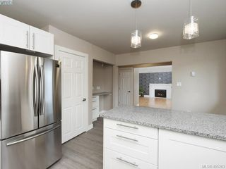 Photo 4: 3590 Shelbourne St in VICTORIA: SE Cedar Hill House for sale (Saanich East)  : MLS®# 805260