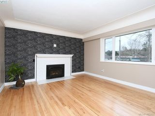 Photo 6: 3590 Shelbourne St in VICTORIA: SE Cedar Hill House for sale (Saanich East)  : MLS®# 805260