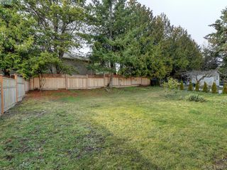 Photo 20: 3590 Shelbourne St in VICTORIA: SE Cedar Hill House for sale (Saanich East)  : MLS®# 805260