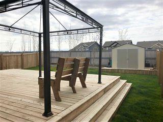Photo 26: 9019 24 Avenue in Edmonton: Zone 53 House for sale : MLS®# E4149453