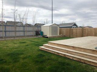 Photo 27: 9019 24 Avenue in Edmonton: Zone 53 House for sale : MLS®# E4149453