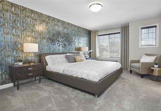 Photo 14: 670 Eagleson Crescent in Edmonton: Zone 57 House for sale : MLS®# E4151508