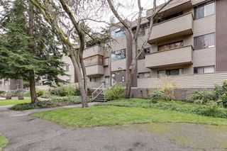 "Photo 3: 3 2433 KELLY Avenue in Port Coquitlam: Central Pt Coquitlam Condo for sale in ""Orchard Valley"" : MLS®# R2359121"