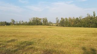 Photo 3: 582 township Road: Rural Sturgeon County Rural Land/Vacant Lot for sale : MLS®# E4153158