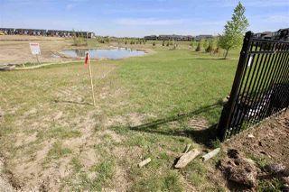 Photo 4: 21916 80 Avenue in Edmonton: Zone 58 House for sale : MLS®# E4154356