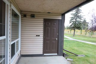 Photo 20: 2127 SADDLEBACK Road in Edmonton: Zone 16 Carriage for sale : MLS®# E4158509