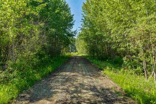 Photo 13: 15 51526 RGE RD 273: Rural Parkland County House for sale : MLS®# E4162339