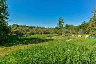 Photo 12: 15 51526 RGE RD 273: Rural Parkland County House for sale : MLS®# E4162339