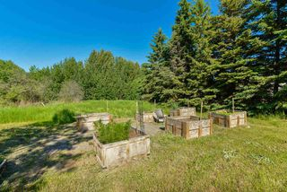 Photo 11: 15 51526 RGE RD 273: Rural Parkland County House for sale : MLS®# E4162339
