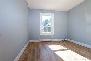 Photo 11: 11680 229 Street in Maple Ridge: East Central House for sale : MLS®# R2384657