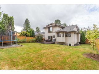 Photo 19: 23183 116 Avenue in Maple Ridge: East Central House for sale : MLS®# R2385138