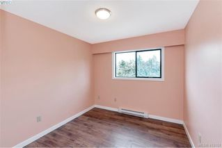 Photo 14: 4188 Carey Road in VICTORIA: SW Northridge Single Family Detached for sale (Saanich West)  : MLS®# 413151
