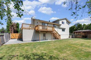 Photo 11: 4188 Carey Road in VICTORIA: SW Northridge Single Family Detached for sale (Saanich West)  : MLS®# 413151