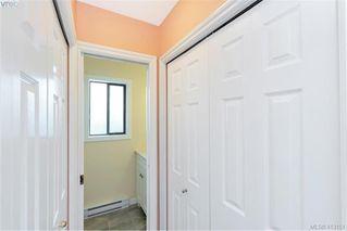 Photo 19: 4188 Carey Road in VICTORIA: SW Northridge Single Family Detached for sale (Saanich West)  : MLS®# 413151