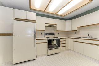 Photo 19: 5717 189 Street in Edmonton: Zone 20 House Half Duplex for sale : MLS®# E4178939