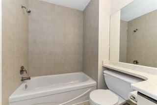 Photo 11: 5717 189 Street in Edmonton: Zone 20 House Half Duplex for sale : MLS®# E4178939