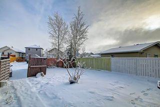 Photo 42: 239 SADDLEMEAD Road NE in Calgary: Saddle Ridge Detached for sale : MLS®# C4279947