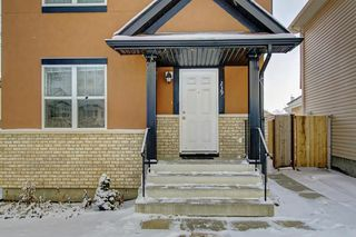 Photo 46: 239 SADDLEMEAD Road NE in Calgary: Saddle Ridge Detached for sale : MLS®# C4279947