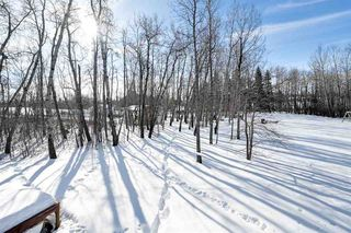 Photo 35: 19 51317 HWY 60: Rural Parkland County House for sale : MLS®# E4188338
