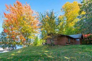 Photo 6: 30 Parula Lane in North Kawartha: Rural North Kawartha House (Bungalow) for sale : MLS®# X4763459