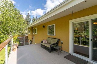 Photo 34: 34305 LARCH Street in Abbotsford: Abbotsford East House for sale : MLS®# R2457312