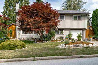 Photo 2: 20801 MCFARLANE Avenue in Maple Ridge: Southwest Maple Ridge House for sale : MLS®# R2489110