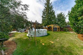Photo 37: 20801 MCFARLANE Avenue in Maple Ridge: Southwest Maple Ridge House for sale : MLS®# R2489110