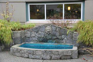 "Photo 32: 308 1725 128 Street in Surrey: Crescent Bch Ocean Pk. Condo for sale in ""OCEAN PARK GARDENS"" (South Surrey White Rock)  : MLS®# R2516824"