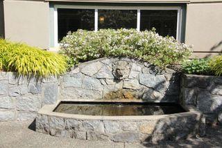 "Photo 6: 308 1725 128 Street in Surrey: Crescent Bch Ocean Pk. Condo for sale in ""OCEAN PARK GARDENS"" (South Surrey White Rock)  : MLS®# R2516824"