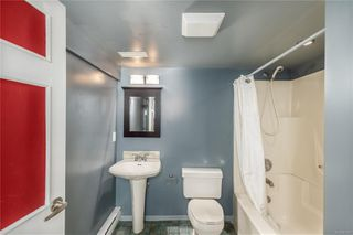 Photo 37: 1642 Hollywood Cres in : Vi Fairfield East House for sale (Victoria)  : MLS®# 861065