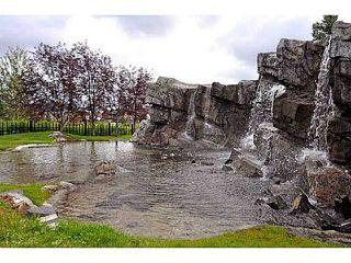 Photo 19: 415 30 DISCOVERY RIDGE Close SW in CALGARY: Discovery Ridge Condo for sale (Calgary)  : MLS®# C3594919