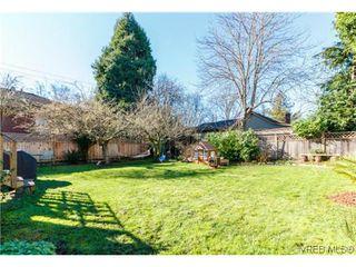 Photo 19: 2706 Richmond Rd in VICTORIA: Vi Jubilee Single Family Detached for sale (Victoria)  : MLS®# 693111