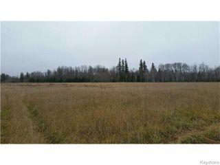 Photo 5: 53993 Station Road in VIVIAN: Anola / Dugald / Hazelridge / Oakbank / Vivian Residential for sale (Winnipeg area)  : MLS®# 1529519