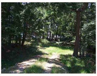 Photo 5: 17 TRUEWORTHY Road: Saturna Island Land for sale (Islands-Van. & Gulf)  : MLS®# R2013432