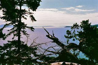 Photo 2: 17 TRUEWORTHY Road: Saturna Island Land for sale (Islands-Van. & Gulf)  : MLS®# R2013432
