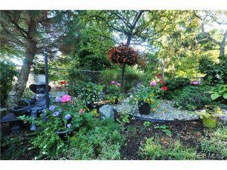 Photo 12: 311 1485 Garnet Road in VICTORIA: SE Cedar Hill Condo Apartment for sale (Saanich East)  : MLS®# 363278