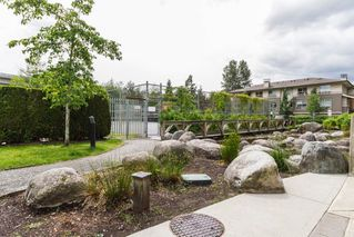 "Photo 18: 97 100 KLAHANIE Drive in Port Moody: Port Moody Centre Townhouse for sale in ""Indigo"" : MLS®# R2075221"