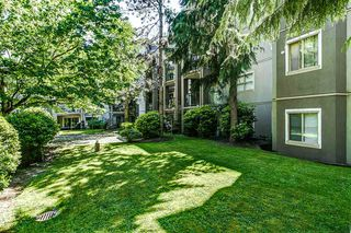 "Photo 14: 314 2615 JANE Street in Port Coquitlam: Central Pt Coquitlam Condo for sale in ""BURLEIGH GREEN"" : MLS®# R2174335"