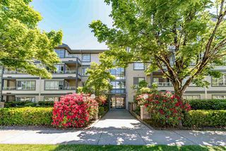 Main Photo: 313 4990 MCGEER Street in Vancouver: Collingwood VE Condo for sale (Vancouver East)  : MLS®# R2173860