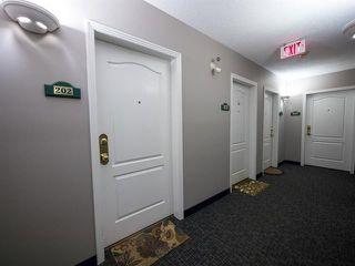 Photo 29: 202 9640 105 Street NW in Edmonton: Zone 12 Condo for sale : MLS®# E4055501