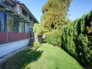 Photo 16: 3 864 Swan St in VICTORIA: SE Swan Lake Row/Townhouse for sale (Saanich East)  : MLS®# 772273